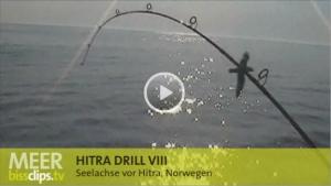Hitra Drill VIII