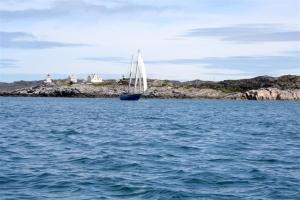 Rings um den Leuchtturm lauern Pollacks und Makrelen