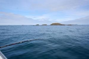 Und irgendwo in der Tiefe hat ein Fisch Witterung aufgenommen ...