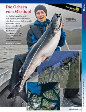 """Rute&Rolle-Artikel """"Die Ochsen vom Øksfjord"""""""