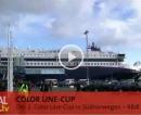 Color Line-Cup